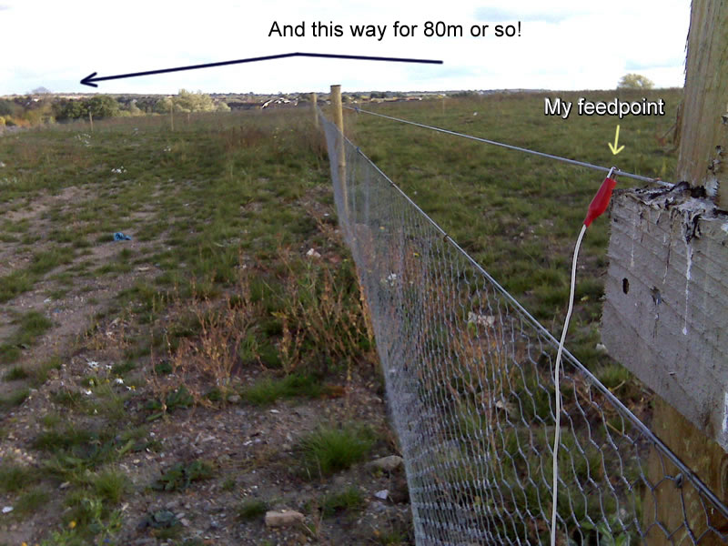 It went left and right from my feedpoint a long way, around 150 metres total.